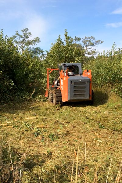 Skid Steer Hire Loch Lomond